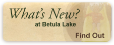 What's New at Betula Lake